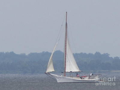 Photograph - Skipjack On The Bay  by Debbie Nester