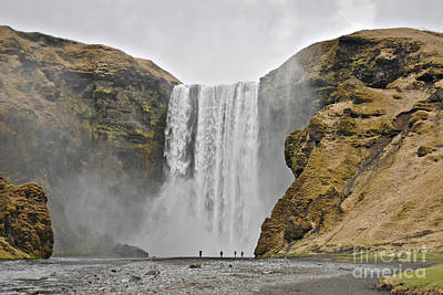 Food And Flowers Still Life - Skogafoss waterfall by Dan Radi