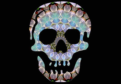 Photograph - Skull 3 by Sheri McLeroy