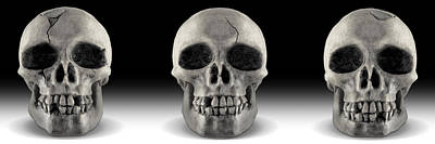Skull 4 Panoramic Print by Mike McGlothlen