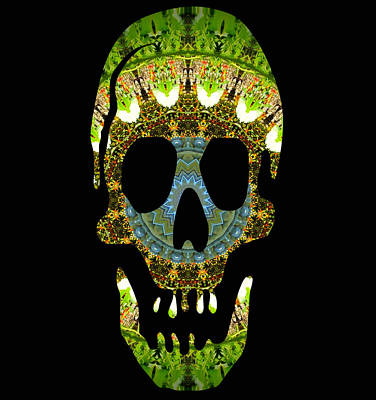 Photograph - Skull 4 by Sheri McLeroy