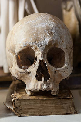 Photograph - Skull And Old Book by Gary Eason