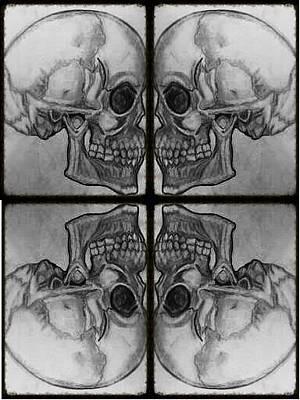 Drawing - Skull Drawing by Lee Farley