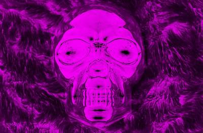 Mixed Media - Skull In Negative Purple by Rob Hans