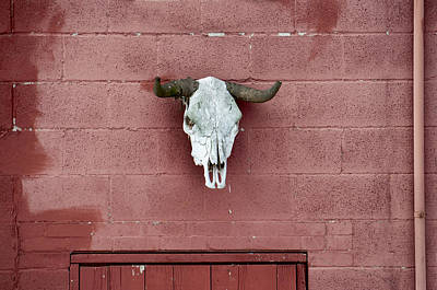 Photograph - Skull On Red by Ross Powell