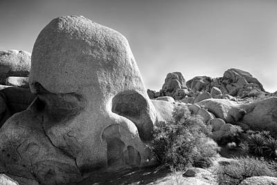 Joshua Tree Np Photograph - Skull Rock by Peter Tellone