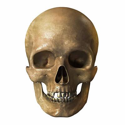 Grave Digital Art - Skull by Vitaliy Gladkiy