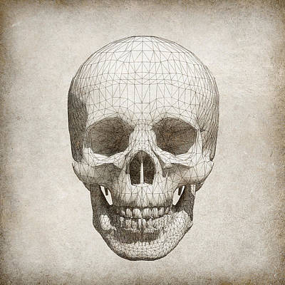 Skull Wireframe On Paper.  Art Print by Thanes