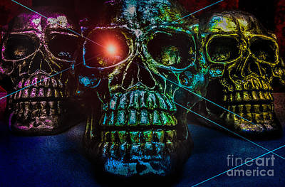 Photograph - Skullduggery by Michael Arend