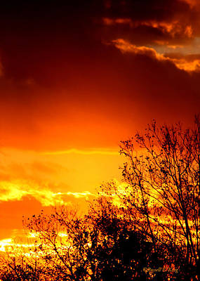 Sky Ablaze Art Print by Russell  King