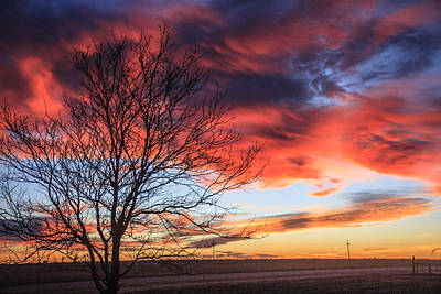 Photograph - Sky Ablaze by Shirley Heier