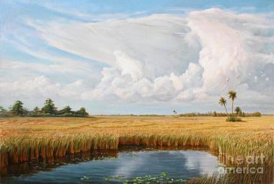 Sky Above The Great Everglades Art Print by Gregory Doroshenko