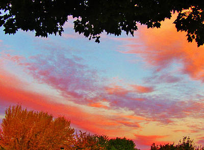Photograph - Sky Art by Marilyn Diaz