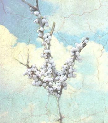 Digital Art - Sky Berries by Grace Dillon