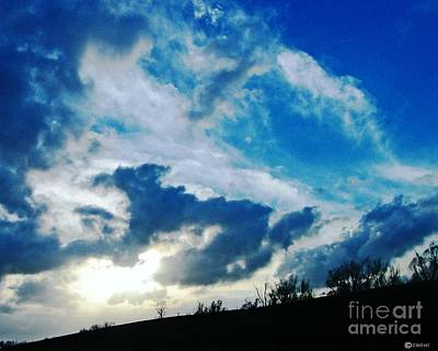 Photograph - Sky Doggy Running The Levee by Lizi Beard-Ward