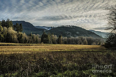 Photograph - Sky - Field - Light And Trees - Some Here Some Gone by Belinda Greb