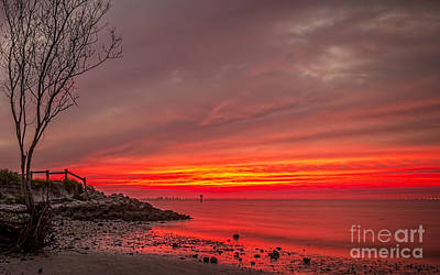 Seashore Photograph - Sky Fire by Marvin Spates