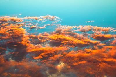 Just Desserts - Sky Fire by Steaphany Waelder