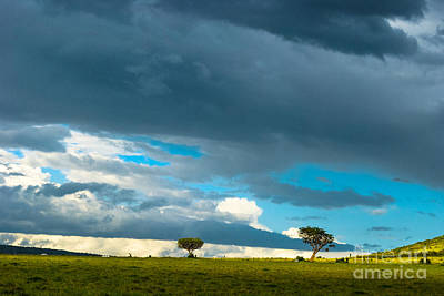 Cheap Prices Photograph - Sky Is The Limit by Syed Aqueel