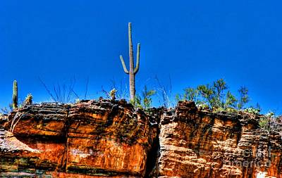 Coronado National Forest Photograph - Sky Island by Tap On Photo