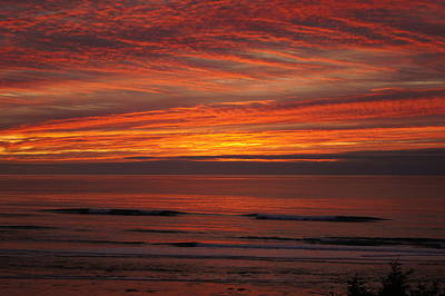 Photograph - Sky On Fire by Angi Parks