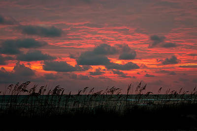 Photograph - Sky On Fire by Dan Wells