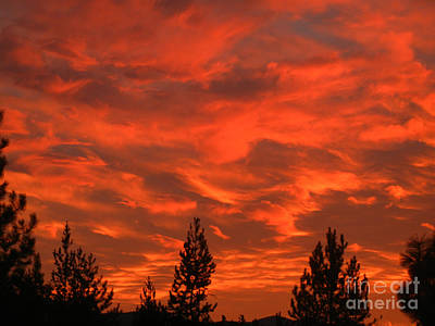 Photograph - Sky On Fire by NightVisions