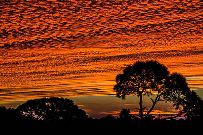 Photograph - Sky On Fire by Richard Goldman