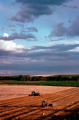 Photograph - Sky Over Harvest by Jim Cotton
