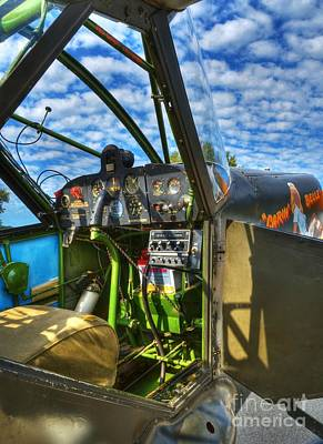 Photograph - Sky Pilot by Mel Steinhauer