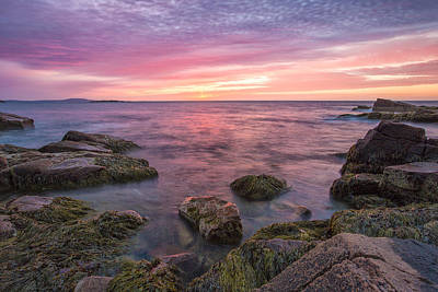 Sky Purple Art Print by Jon Glaser