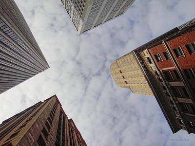 Photograph - Sky Scrapers by Donna Blackhall