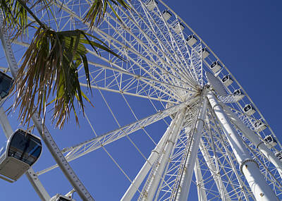 Photograph - Sky Wheel And Palms by MM Anderson