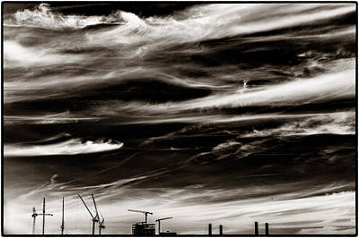 Photograph - Sky Wisps And Cranes by Lenny Carter