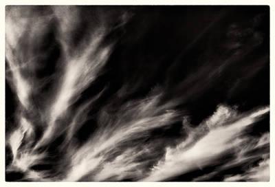 Bear Photography - Sky Wisps BW by Lenny Carter