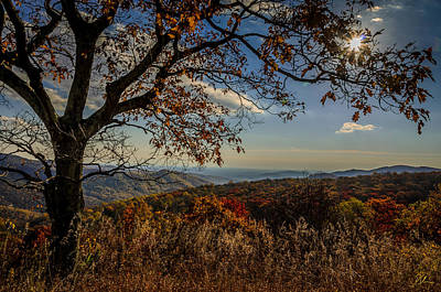 Photograph - Skyline Drive by Pat Scanlon