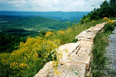 Photograph - Skyline Drive. Shenandoah National Park by Connie Fox