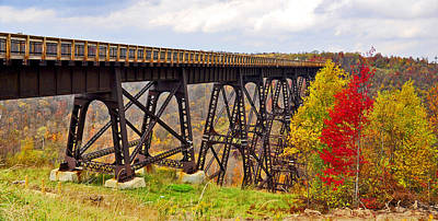 Kinzua Photograph - Skywalk Kinzua Bridge State Park Mckean County Pennsylvania by A Gurmankin