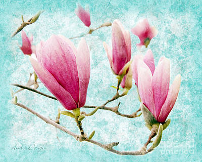 Magnolia Photograph - Skyward Magnolia Painterly 4 by Andee Design
