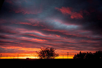 Art Print featuring the photograph Skywaves In Pink by Shirley Heier