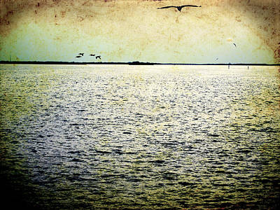 Photograph - Skyway Bay by Beverly Stapleton