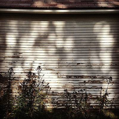 Photograph - Slats And Shadows by Frank J Casella