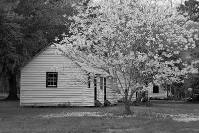 Slave Cabins In Black And White Original
