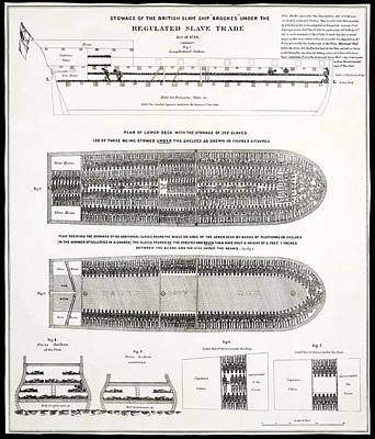 Slave Ship Middle Passage Stowage Diagram  1788 Print by Daniel Hagerman