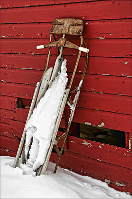 Photograph - Sled On Red #2 by Nikolyn McDonald