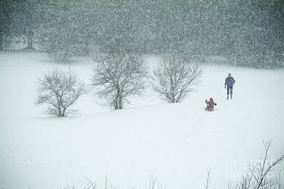 Photograph - Sledding in the Storm by Mark Avery