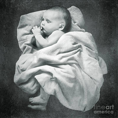 Photograph - Sleep Like A Baby by Cindy Singleton