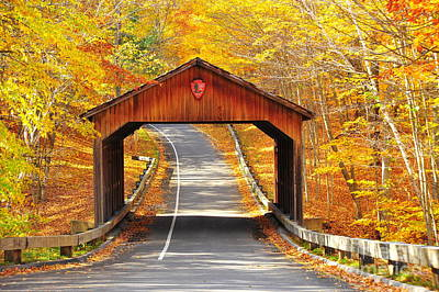 Sleeping Bear National Lakeshore Covered Bridge Art Print by Terri Gostola