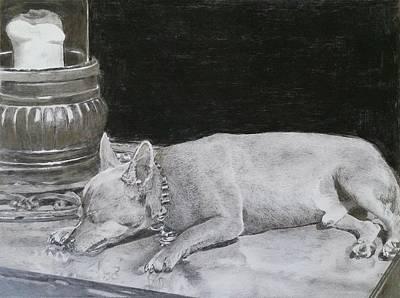 Winter Animals - Sleeping dog #2 by Mike  Amato