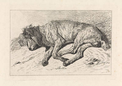 Sleeping Dog, George Jooss, Johannes Mock Art Print by Artokoloro
